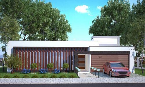 Planta de casa com 1 suíte, 2 demi suítes e piscina